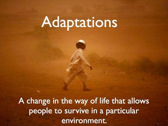 Adaptations_001